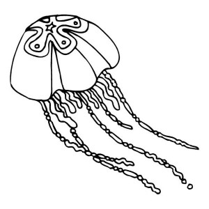 star jellyfish coloring page