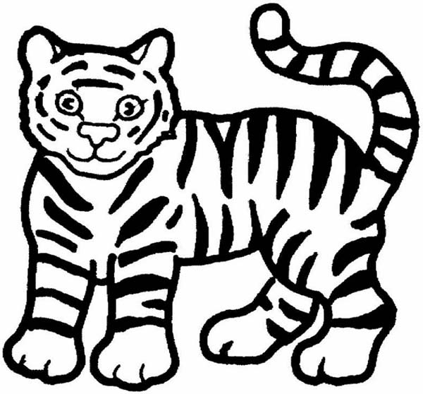 Cute cartoon tiger coloring pages sketch coloring page for Coloring pages tiger cubs