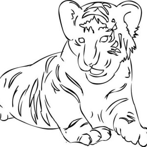 tiger coloring pages realistic dragons   Indonesian Komodo Dragon Coloring Pages - Download & Print ...