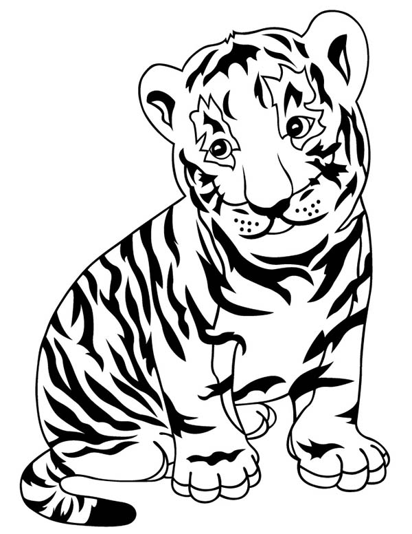 Tiger a lovely tiger cub in a zoo coloring page for Tiger cub scouts coloring pages