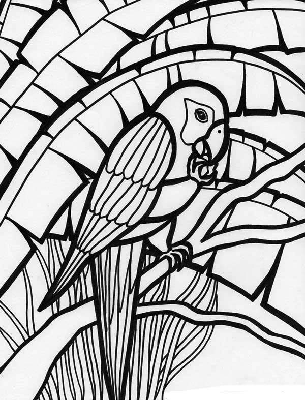 amazing parrot coloring page
