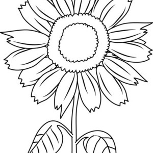Happy Sunflower Coloring Page Happy Sunflower Coloring Page
