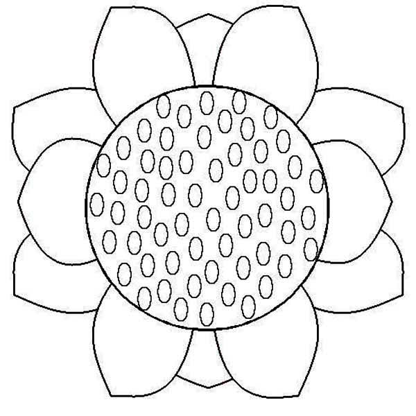 Close up Sunflower Coloring Page Download Print Online
