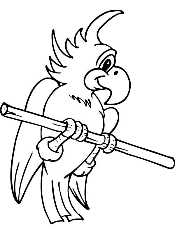 Cute parrot coloring page download print online for Cute parrot coloring pages