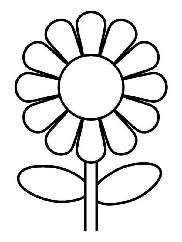 Great Sunflower Coloring Page  Download  Print Online Coloring