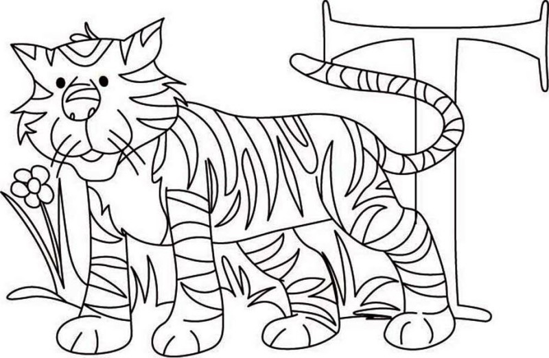 Tiger Learn Letter T For Coloring Page