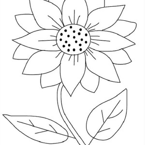 Sunflower and Sun Coloring Page Sunflower and Sun Coloring Page