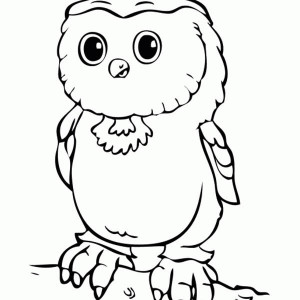 Baby Owl Colouring Pages Baby Owl Coloring Page