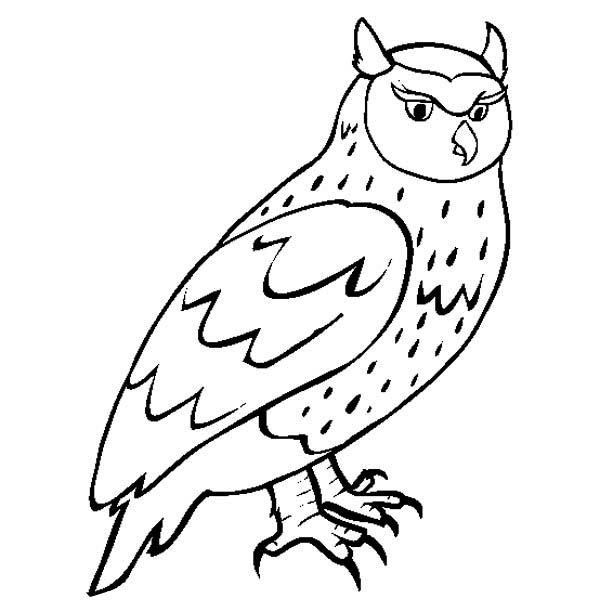 great horned owl coloring pages - photo#26
