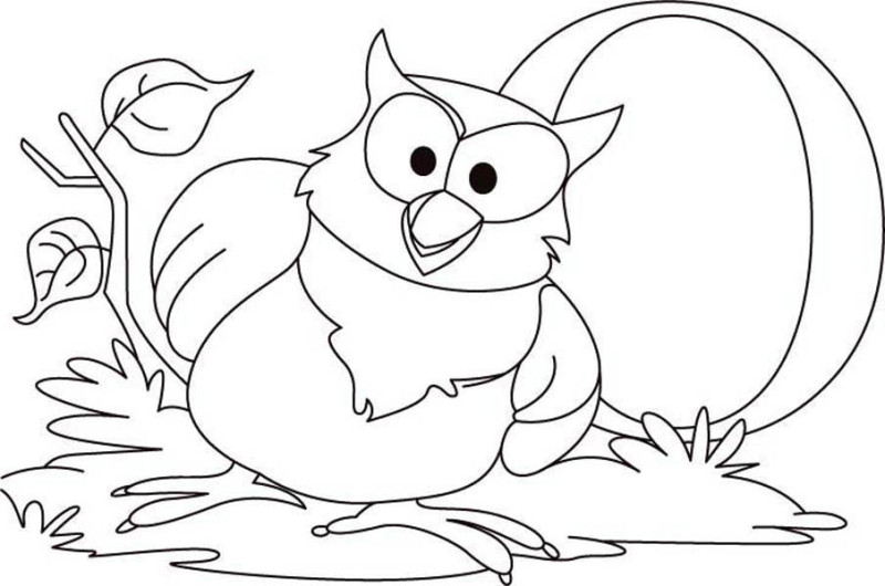 owl big owl coloring page big owl coloring pagejpgfull size image - Owl Color Page