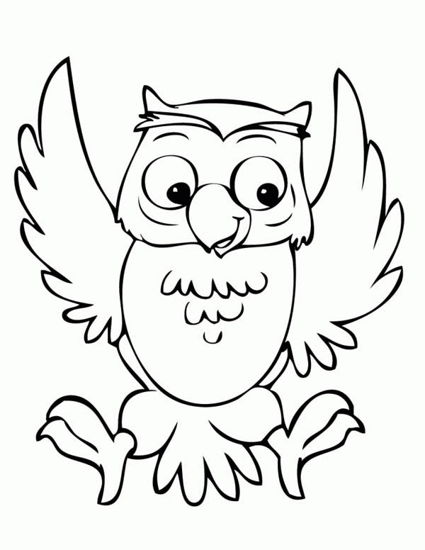 funny owl coloring page - Owl Color Page