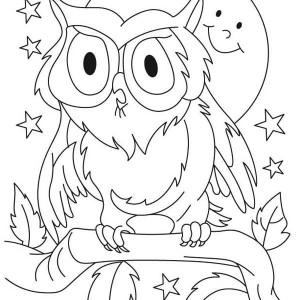 great horned owl for kids