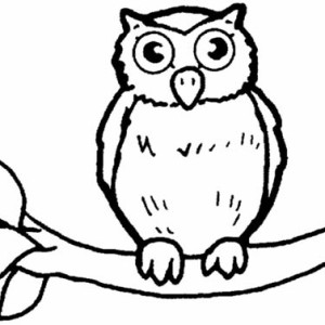 great horned owl for kids coloring page