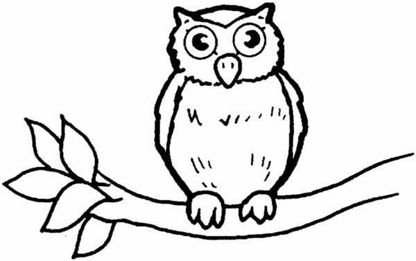 great horned owl for kids coloring page - Owl Pictures For Kids