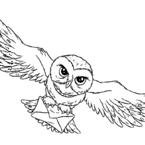 Owl Harry Potter Coloring Page