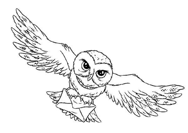 Harry And His Mail Bird Harry Potter Bird Mail Coloring Pages