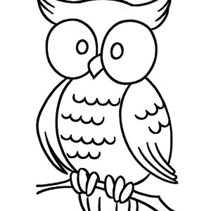 large eye owl coloring page - Large Coloring Pages