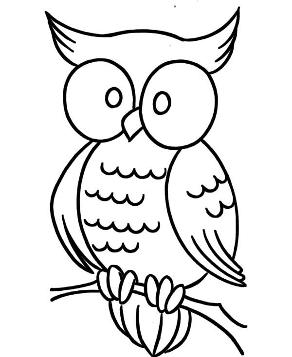 Coloring Pages Of Animals With Big Eyes : Big eyed animal coloring pages