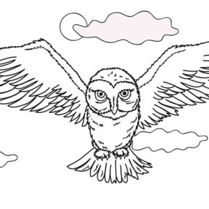 lying owl in the dark coloring page