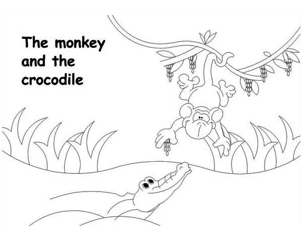 monkey and the crocodile coloring page - Crocodile Coloring Pages Print