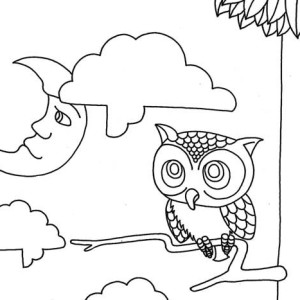 moon and owl coloring page