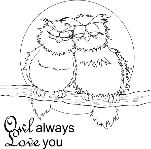 Owl Always Love You Coloring For Kids Page