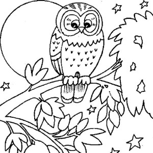 owl and large moon coloring page