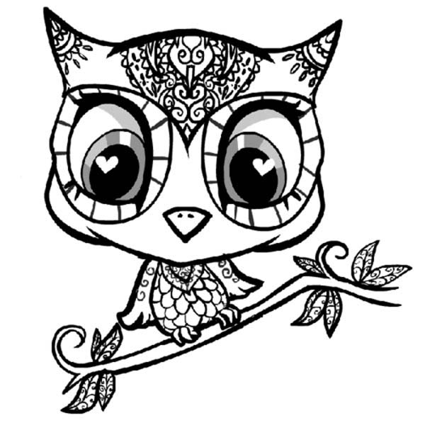 Pics Photos Cartoon Coloring Book Page With Owl Outlines