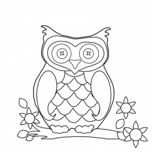 owl flat image coloring for kids