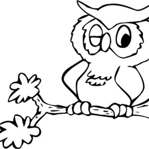 owl is so sleepy at daylight coloring page