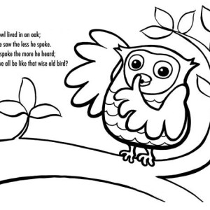 owl poet and coloring for kids
