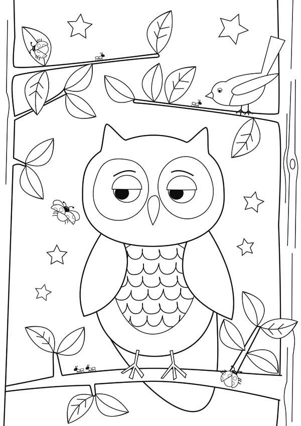 owl simple owl drawing for kidsjpg - Simple Drawing For Children