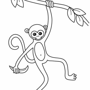 Monkey Slim Coloring Page