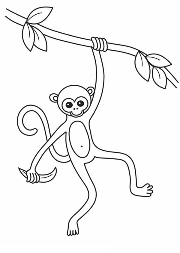 monkey king coloring pages photo34