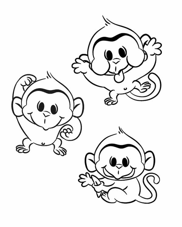 Three Funny Monkey Coloring Page