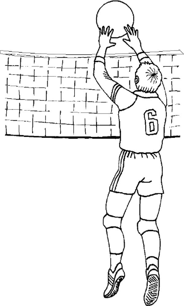 Volleyball Set Coloring Page Download Amp Print Online