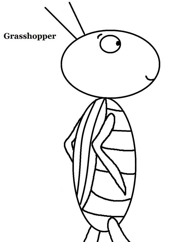 10 plagues of egypt locusts grasshopper coloring page