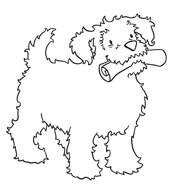 a smart dog bring the newspaper coloring page download print online coloring pages for free. Black Bedroom Furniture Sets. Home Design Ideas