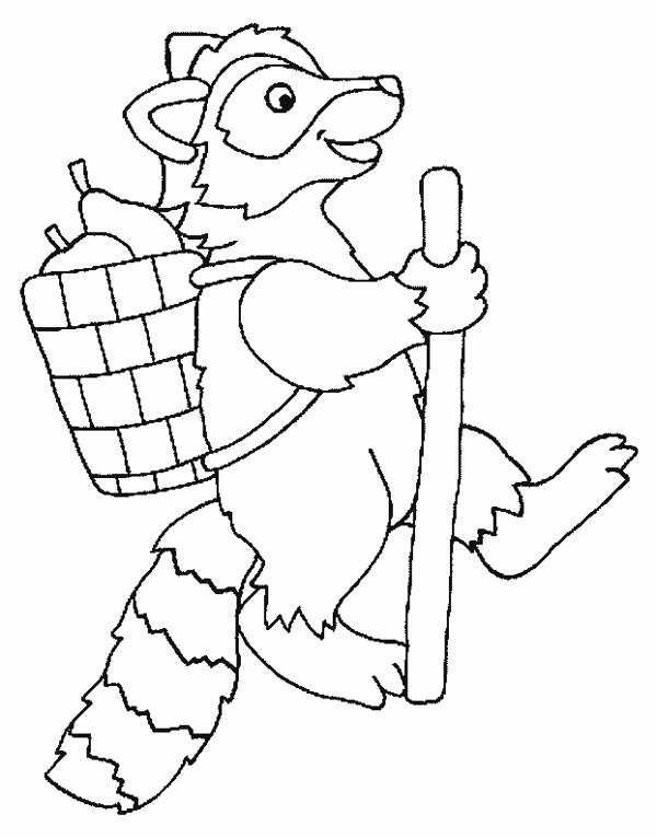 adventure of raccoon coloring page - Racoon Coloring Page