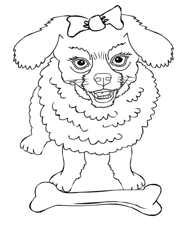 Angry Dog Protecting Its Bone Coloring Page - Download & Print ...