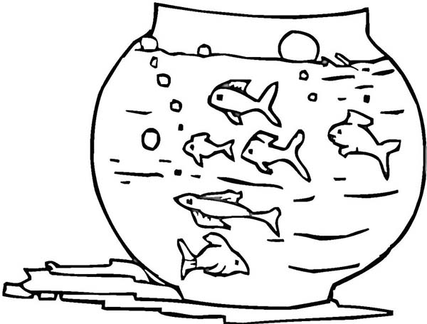 Fish Bowl Awesome Coloring Page PageFull Size Image