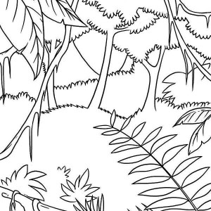 Awesome Tropic Rainforest Coloring Page