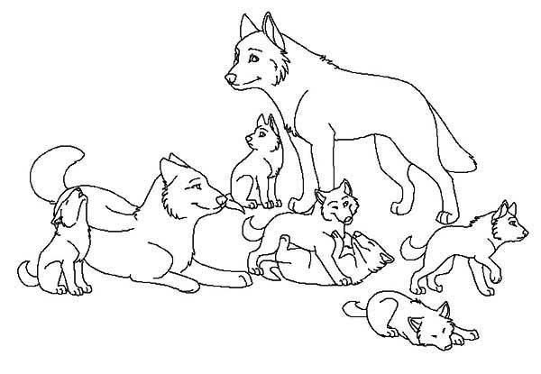 Babies Wolf Coloring Page Download