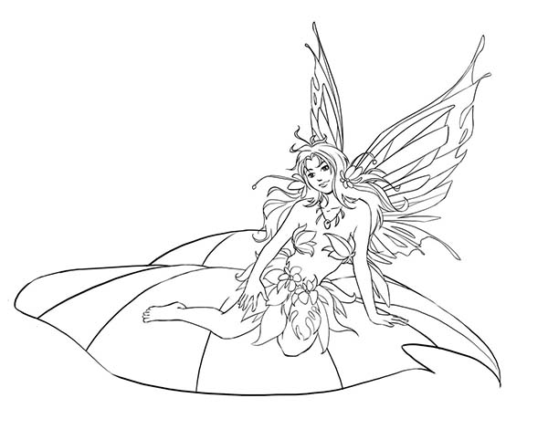 beautiful disney fairies sitting on leaf coloring page download print online coloring pages. Black Bedroom Furniture Sets. Home Design Ideas