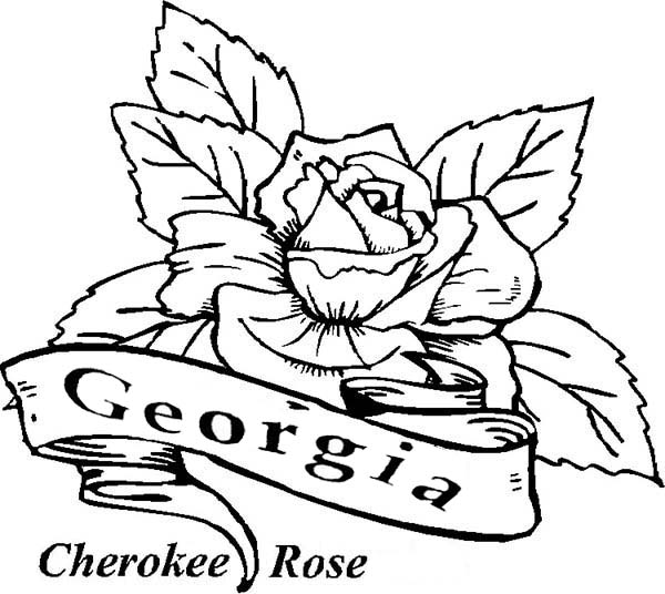 Beautiful Rose Coloring Pages Easy Together With Worksheets On Basic ...