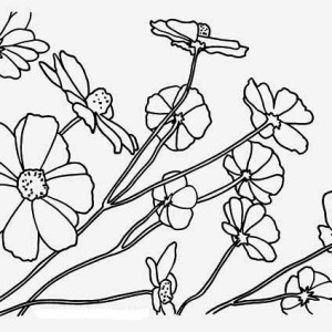 beautiful rainforest flower coloring page