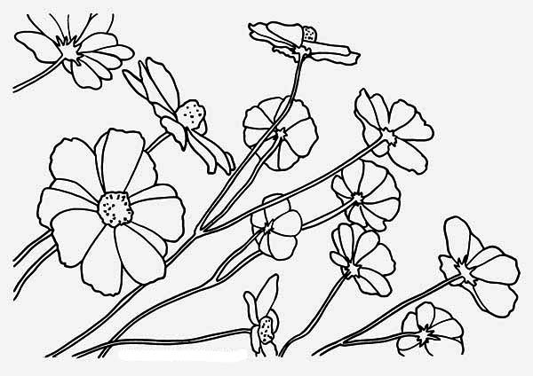 Print Beautiful Rainforest Flower Coloring Page In Full Size