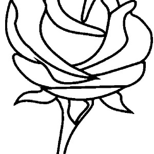 Beautiful Rose Picture Coloring Page