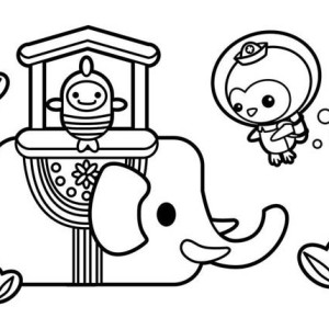 Captain Barnacles from The  Octonauts Meet Sea Elephant Coloring Page