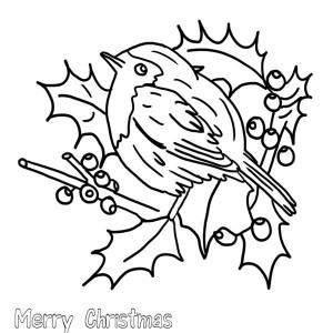 christmas floral arrangements and robin bird coloring page